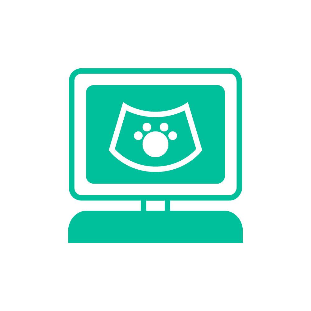Centro Veterinario Los Colorados - Servicios de ecografía para mascotas