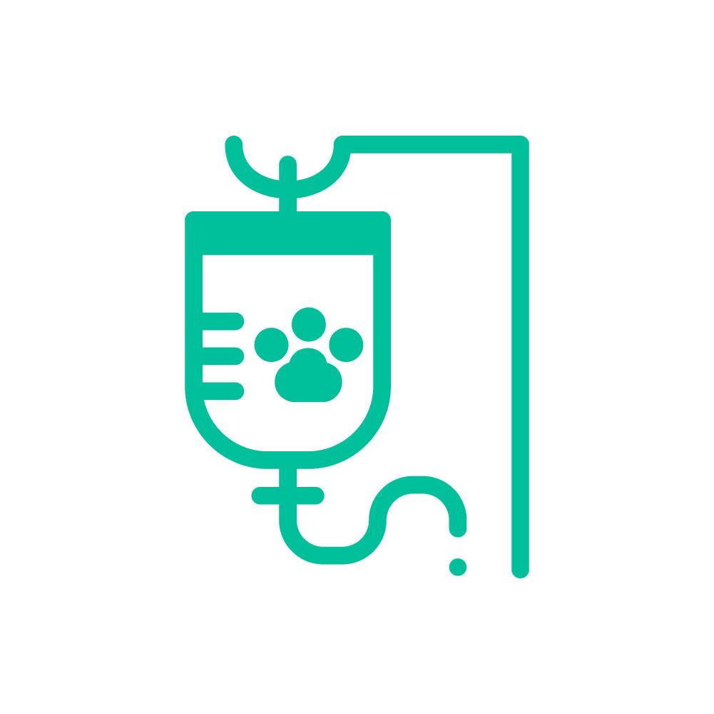 Centro Veterinario Los Colorados - Servicios de hospitalización a mascotas